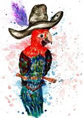 Cartoon Parrot Art