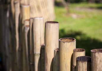 Old bamboo fence in a tropical country. Texture background