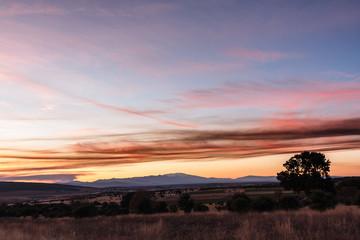 Encina, Montes del Teleno y cielo al atardecer. Sierra de Congosta, León, España.