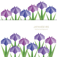 Japanese iris background