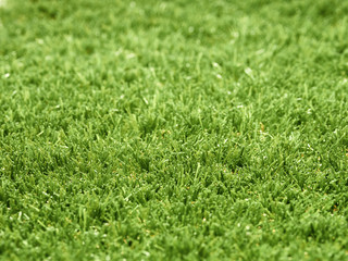 45 degree angled view of green astro turf grass, abstract lawn.