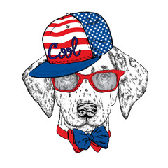 Beautiful dog with glasses, cap and tie. Vector illustration. Cute Dalmatians. Puppy.