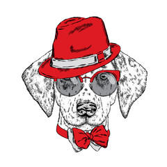 Cute puppy wearing a hat, sunglasses and a tie. Vector illustration. Beautiful dog. Dalmatians.