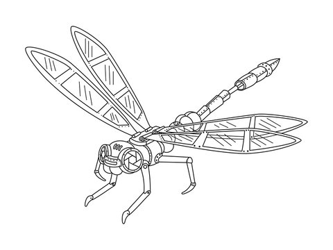 Steampunk style dragonfly coloring book vector