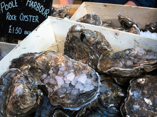 Oysters for Sale in Borough Market