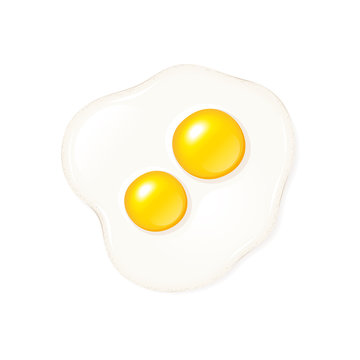 Fried egg with two yolks vector icon