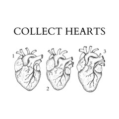 Collect Human Hearts Dotwork