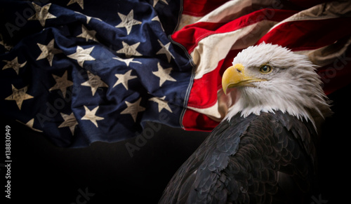 Fototapete American Bald Eagle with Flag.