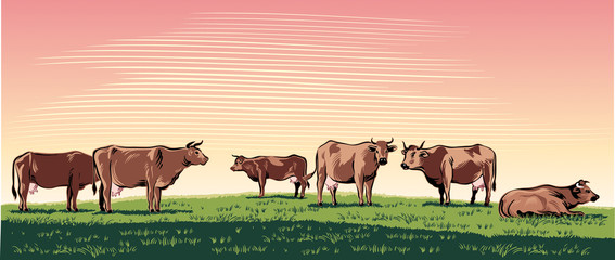 Cows grazing in a meadow. Wall mural