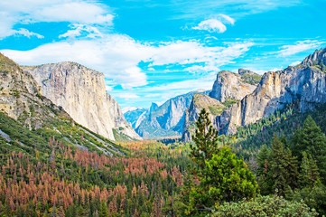 Beauty from Tunnel view