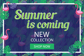 Summer collection banner with tropical background for online shopping, magazines and websites. Vector illustration.