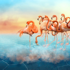 Colorful photomanipulation with red flamingo at right side in the desert  and sunset sky