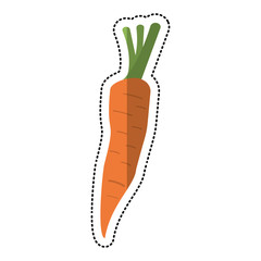 cartoon carrot vegetable nutrition icon vector illustration eps 10