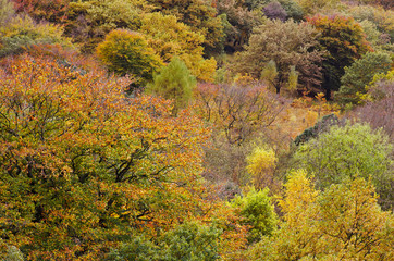 Peak District Dovestone Reservoir Greenfield, England, UK