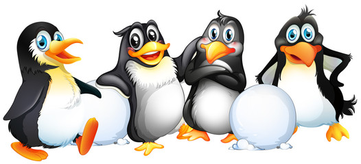 Four penguins with snowballs