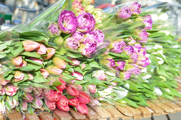 Many tulips flowers for sale.