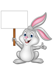 Cartoon rabbit abbit with blank sign