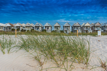 Grasses and Dunes with Row of Beach Houses