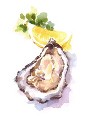 Oyster Lemon Wedge hand painted watercolor food illustration isolated on white background