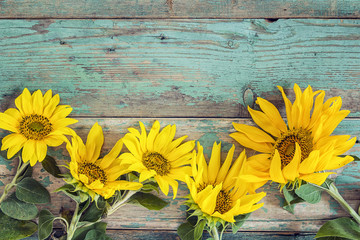 Background with yellow sunflowers on old wooden boards with peeling paint.