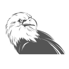 Eagle head in black and white style