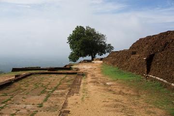 Sigiriya III