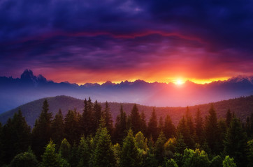 Majestic colorful sunset