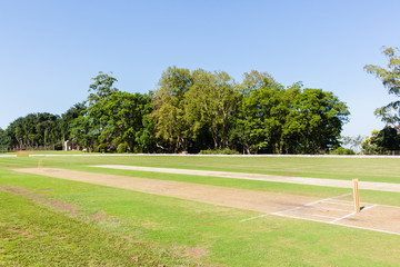 Cricket Field Pitch's Wickets Grounds