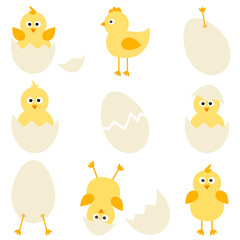 Set of cartoon chickens for easter design