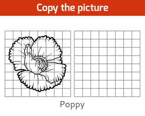 Copy the picture, Poppy
