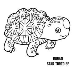 Coloring book, Indian star tortoise