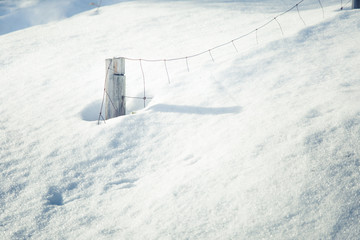 A single pole of a wooden fence in the snow