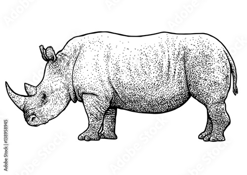 Rhinoceros illustration drawing engraving ink line - Rhinoceros dessin ...