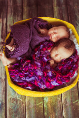 Baby-girls lie under pink and violet blankets in yellow basket
