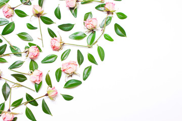 The decor of green leaves and pink flowers, roses on a white background. Top view of a flat