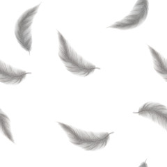 Watercolor seamless pattern feather.