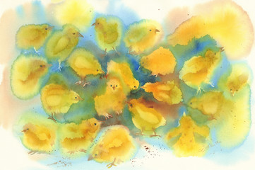 Yellow chickens watercolor