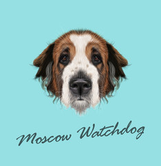 Vector illustrated Portrait of Moscow Watchdog dog