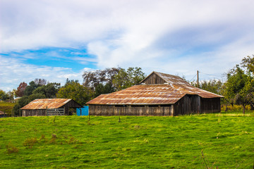 Old Tin roof Barns On Local Ranch