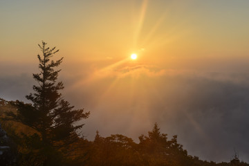 Fototapete - Dramatic Sunrise from Mountain Top with Foggy Valley