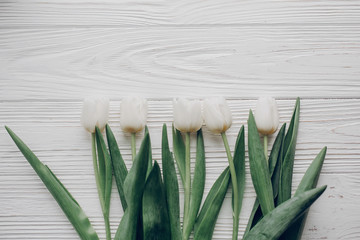 hello spring flat lay. stylish white tulips on rustic wooden table background top view. soft light, tenderness atmospheric moment. space for text. rustic wedding
