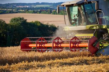 Récolte du blé en France