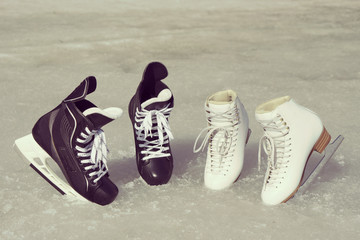 Black and white skates together on the spring ice in sunny day