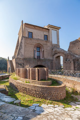 Rome, Italy. The ruins of an elliptical fountain in the imperial residence - the Flavian palace (Domus Flavia, 1st century) and the Farnese house (Casino del Belvedere, XVI century).