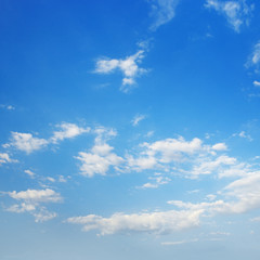 Cirrus clouds against a blue sky.