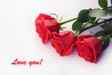 Red roses closeup. Beautiful bouquet. Love You card