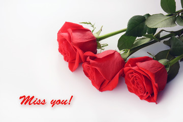 Red roses closeup. Beautiful bouquet. Miss You card
