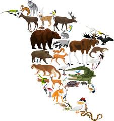 animals North America - vector illustration