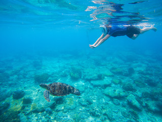 Woman snorkeling with green turtle underwater photo.