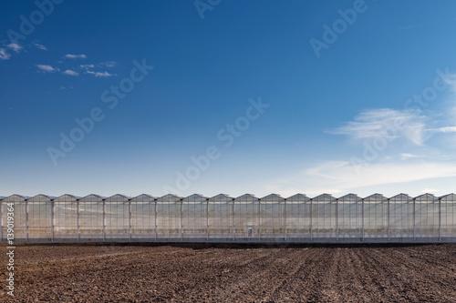 Moderne Landwirtschaft Gewächshaus Konzept